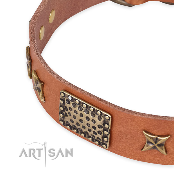 Full grain natural leather collar with rust-proof hardware for your beautiful canine