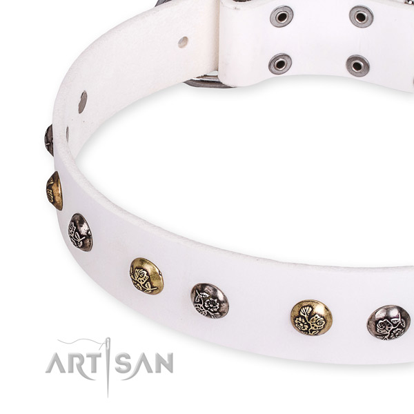 Natural leather dog collar with trendy rust-proof studs