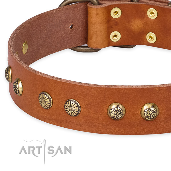 Full grain genuine leather collar with durable D-ring for your stylish canine