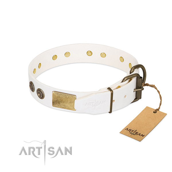 Rust-proof hardware on natural genuine leather collar for everyday walking your canine