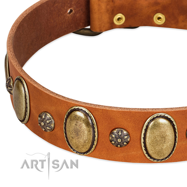Handy use best quality leather dog collar