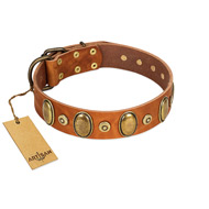 """Crystal Sand"" FDT Artisan Tan Leather Bulldog Collar with Vintage Looking Oval and Round Studs"