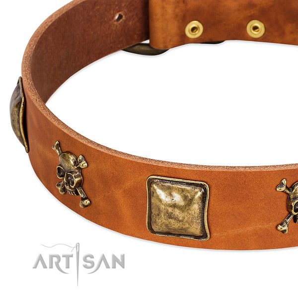 Stylish embellishments on full grain genuine leather collar for your doggie