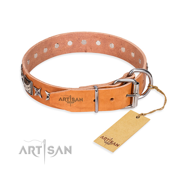 Top quality embellished dog collar of leather