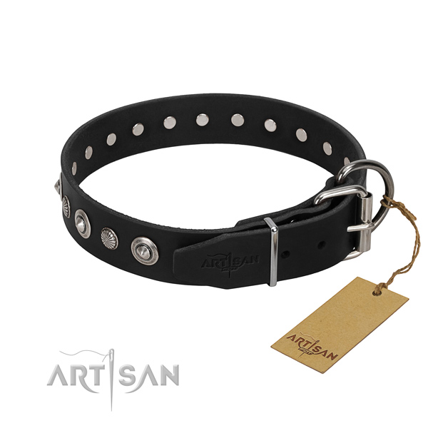 Durable genuine leather dog collar with impressive adornments