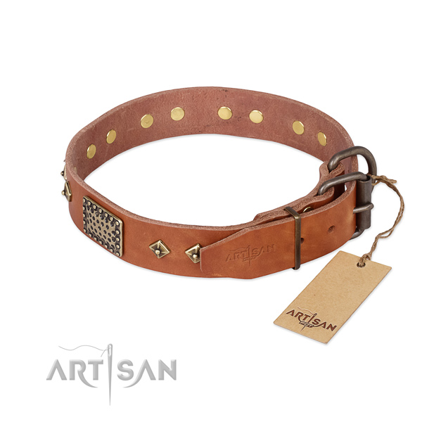 Full grain natural leather dog collar with corrosion resistant fittings and decorations