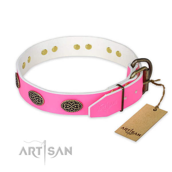 Everyday walking leather collar with adornments for your four-legged friend