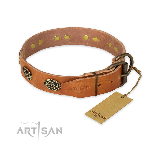 Strong traditional buckle on leather collar for fancy walking your dog