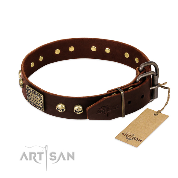 Reliable fittings on comfy wearing dog collar
