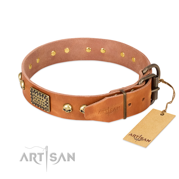 Rust-proof fittings on comfortable wearing dog collar