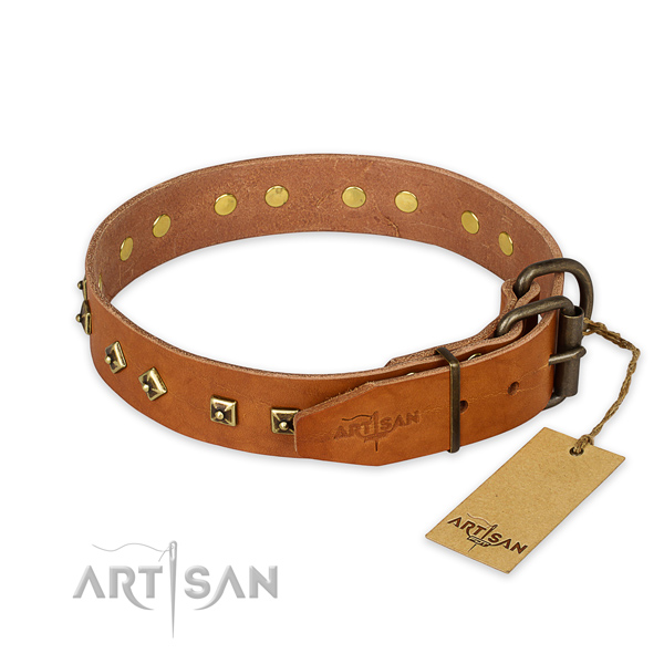 Strong hardware on leather collar for walking your four-legged friend