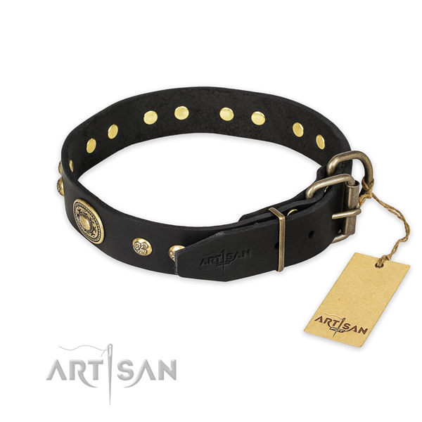 Rust resistant hardware on full grain leather collar for walking your dog