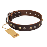 """Rare Flower"" FDT Artisan Brown Leather Bulldog Collar Adorned with Old-look Hemisphere Studs"