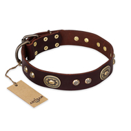 """Breath of Elegance"" FDT Artisan Decorated with Plates Brown Leather Bulldog Collar"