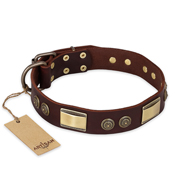 """Golden Stones"" FDT Artisan Brown Leather Bulldog Collar with Old Bronze Look Plates and Circles"