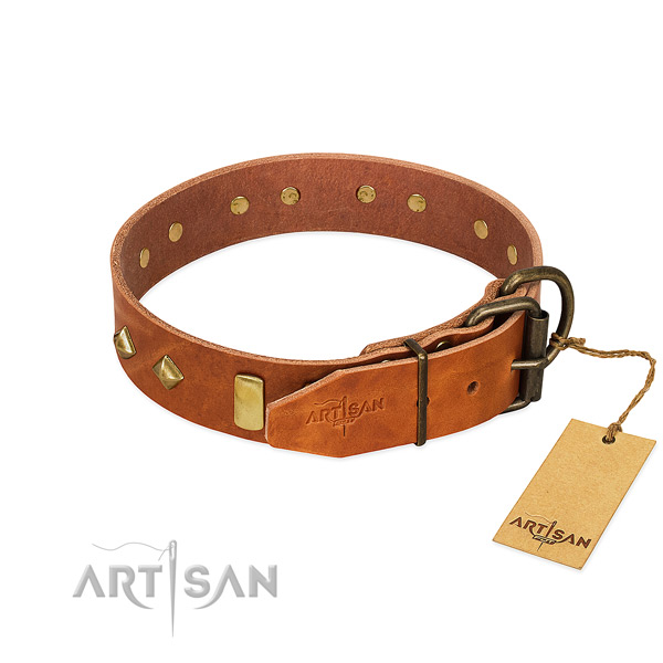 Daily use genuine leather dog collar with trendy studs