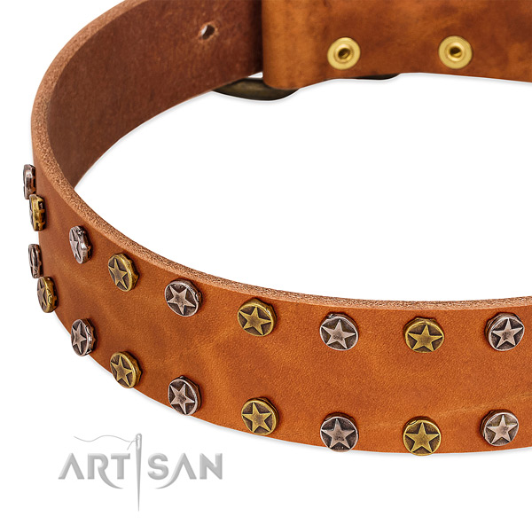 Daily use genuine leather dog collar with stylish adornments