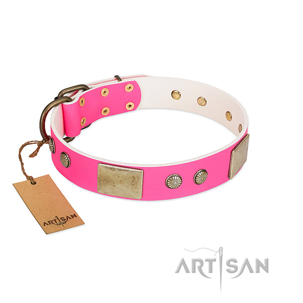 Easy wearing leather dog collar for everyday walking your doggie