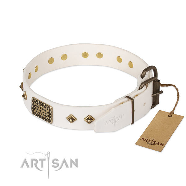 Full grain leather dog collar with strong buckle and embellishments