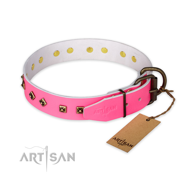 Rust-proof buckle on leather collar for fancy walking your canine