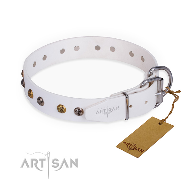 Full grain leather dog collar with awesome durable decorations