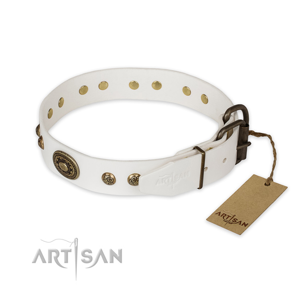 Reliable traditional buckle on genuine leather collar for daily walking your pet