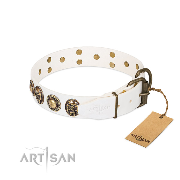 Strong embellishments on everyday use dog collar