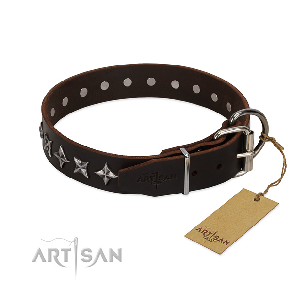 Daily use embellished dog collar of top quality full grain leather