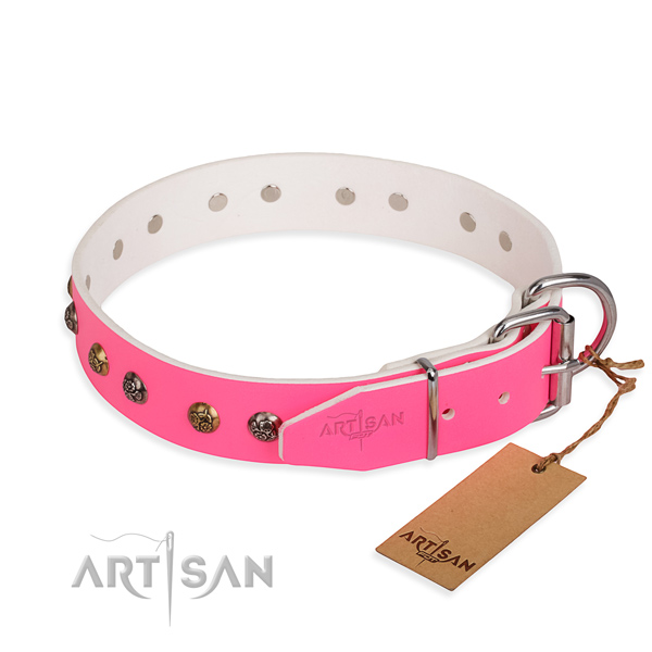 Full grain genuine leather dog collar with top notch reliable embellishments