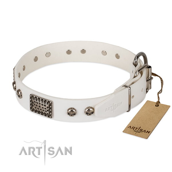 Rust resistant fittings on stylish walking dog collar