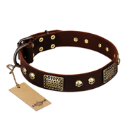 """Magic Amulet"" Brown Leather Bulldog Collar with Skulls and Plates"