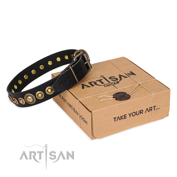 Durable full grain natural leather dog collar made for daily use