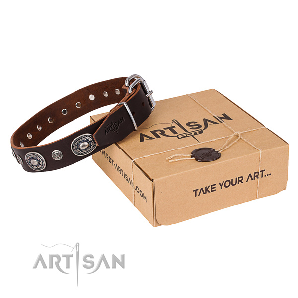 High quality natural genuine leather dog collar handcrafted for everyday walking