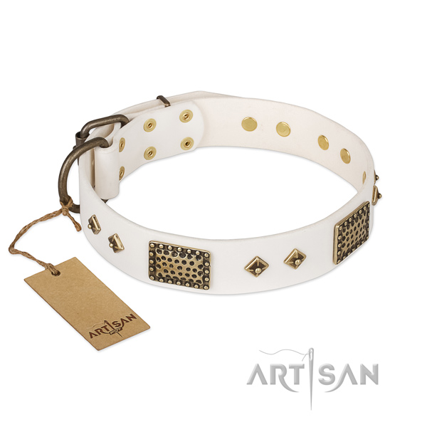 Significant leather dog collar for daily use