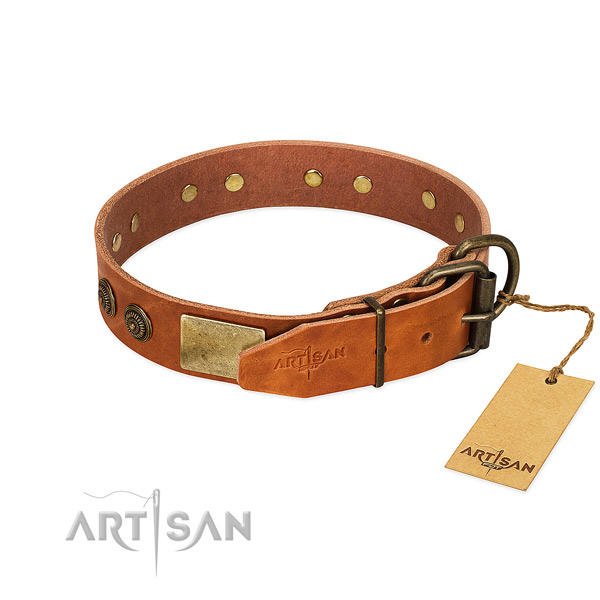 Rust resistant buckle on leather collar for stylish walking your doggie