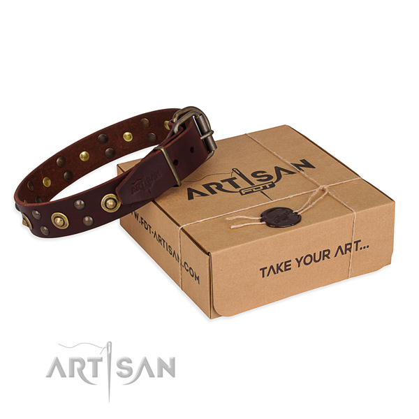 Corrosion proof traditional buckle on full grain genuine leather collar for your beautiful pet