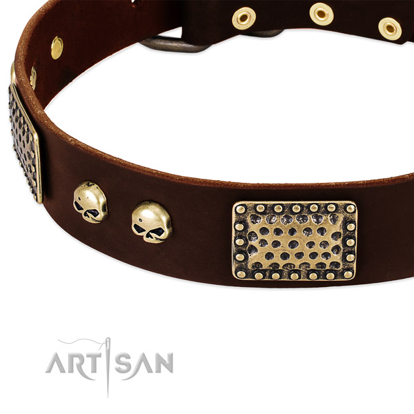 Rust resistant traditional buckle on full grain leather dog collar for your doggie