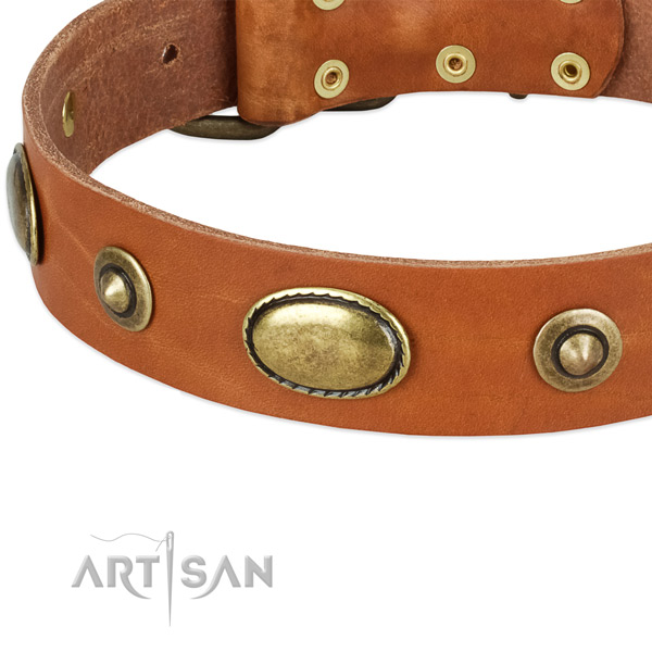 Durable fittings on natural leather dog collar for your dog