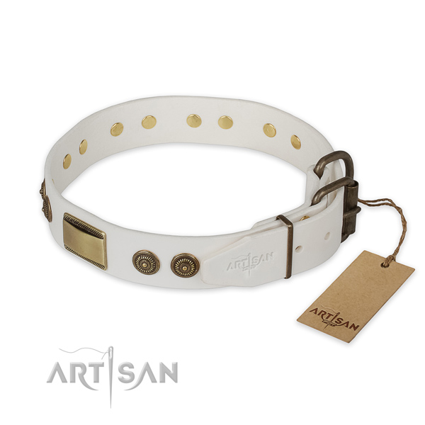Rust-proof D-ring on full grain natural leather collar for everyday walking your pet