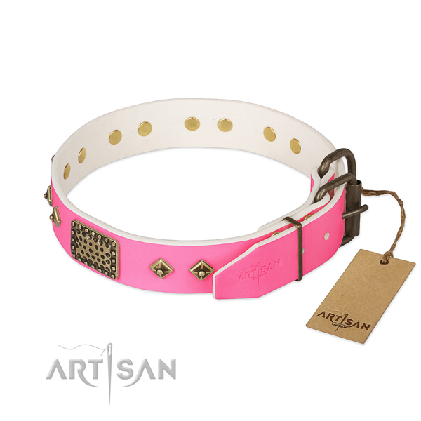 Rust resistant traditional buckle on comfortable wearing dog collar