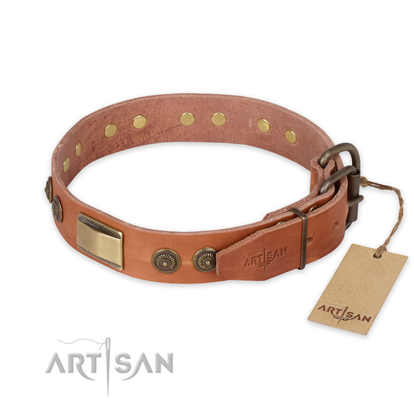 Durable hardware on genuine leather collar for daily walking your four-legged friend