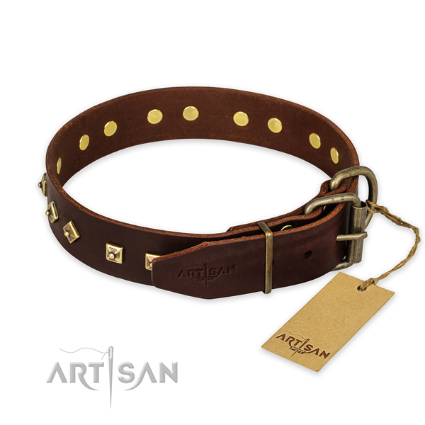 Strong fittings on full grain leather collar for basic training your pet