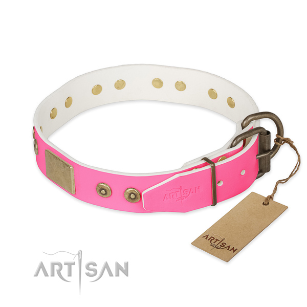 Corrosion resistant embellishments on easy wearing dog collar