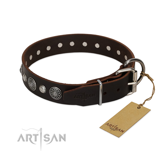 Durable natural leather dog collar with incredible embellishments