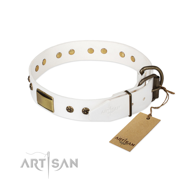 Natural genuine leather dog collar with reliable hardware and embellishments