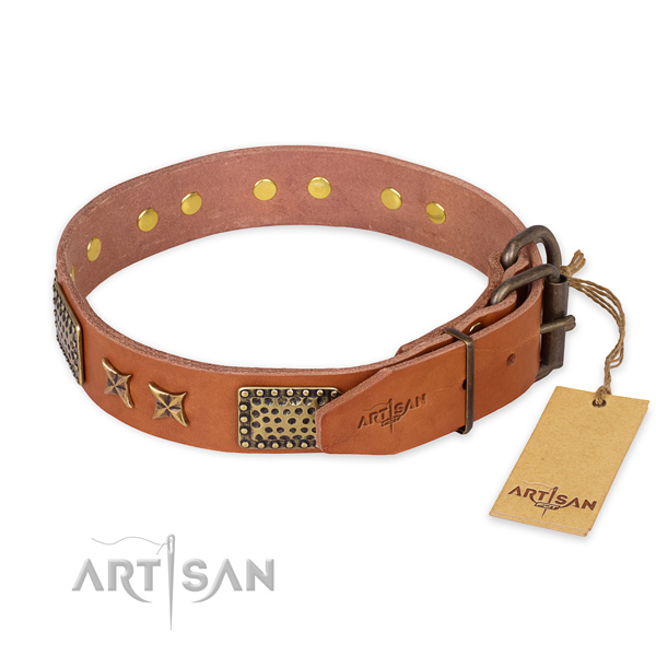 Rust resistant buckle on leather collar for your impressive four-legged friend