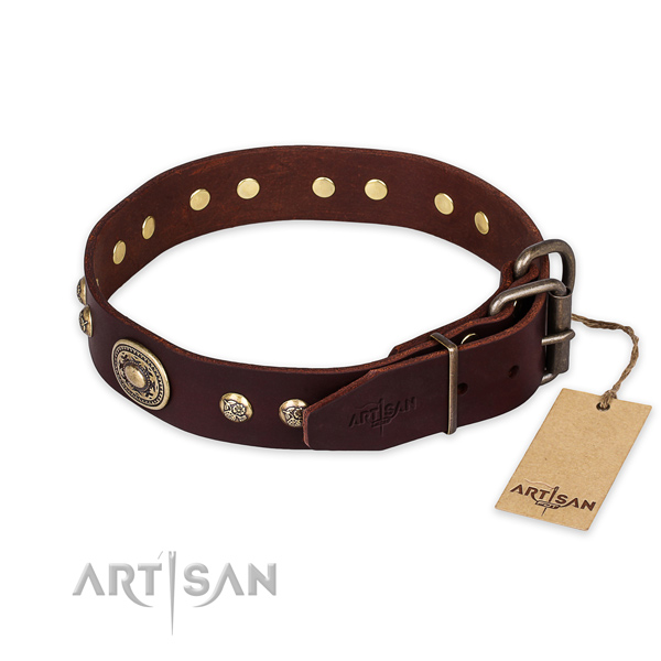 Corrosion proof hardware on natural leather collar for walking your pet
