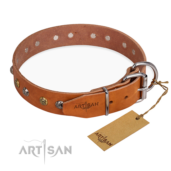 Full grain leather dog collar with stylish reliable adornments