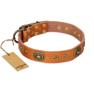 """Dandy Pet"" FDT Artisan Handcrafted Tan Leather Bulldog Collar"