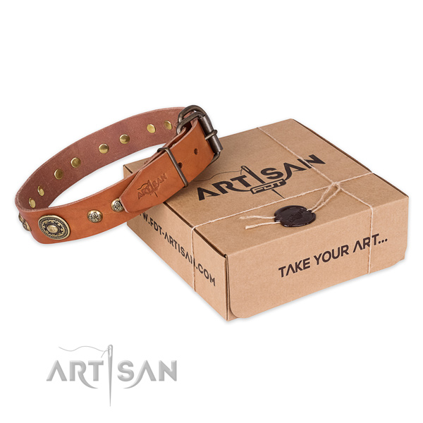 Durable fittings on full grain leather dog collar for everyday use